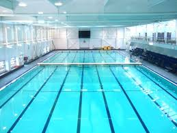 Olympic Pool Dimensions Pool Builders Olympic Diving Swimming Pool