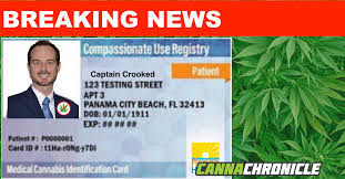 the cans boom is well underway in florida and the florida department of health is struggling to keep up