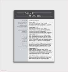 Download Resume Builder Template Fresh Free Resume Builder Templates