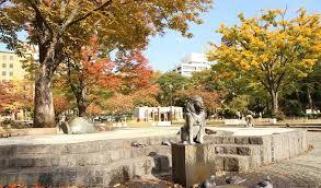 「横浜公園 紅葉 画像 無料」の画像検索結果