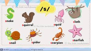 Click here for a teacher and parent guide. Poster Phonics The S Sound The Kids Worksheets