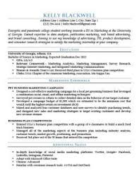 blue entry level resume template resume template for job