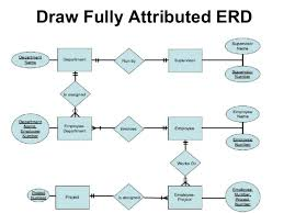 entity relationship diagram  erd    draw fully attributed erd