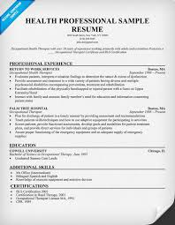 Nursing CV template  nurse resume  examples  sample  registered     Free Consumer Lending Professional Resume Example professional resumes  professional resumes