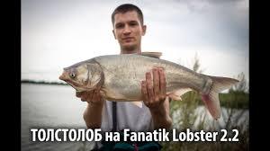 """Мягкая <b>приманка Fanatik Lobster 3.6</b>"""""""