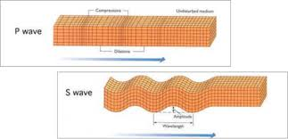 P Wave Types And Properties P Waves Nomenclature Of P Waves