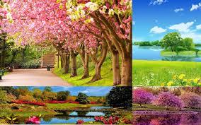 Spring Wallpaper APK 1.01 Download for ...