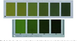 Fall Leaf Color Chart Figure 3 From Android Based Rice Leaf Color Analyzer For