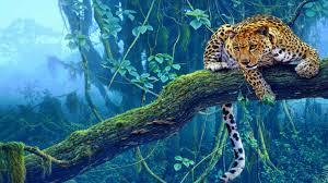1366x768 jungle tiger