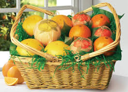 woven picnic basket packed with florida oranges tangerines and gfruit