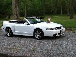 2003 Ford Mustang Cobra Svt Specs - Car Autos Gallery