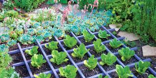 vegetable garden catalogs organic catalogs garden accessories catalogs vegetable garden planner best garden catalogs gardening for