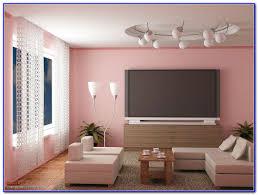 63 most divine living room colors asian paints best also