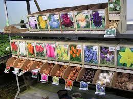 Small Picture Garden Design Garden Design with Bulbs Stock Photos Images Plant
