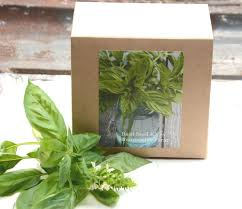Herb Kitchen Garden Kit Sweet Basil Seed Kit Diy Kit Indoor Herb Garden Kit Basil Seeds