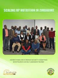 food nutrition council zimbabwe co ordinating food security initiatives