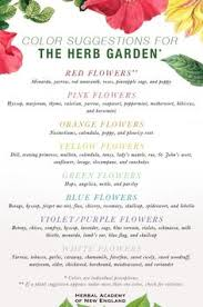 Small Picture Herbal Tea Gardens Womens Care Garden Plangrow herbs such as