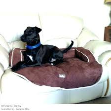 furniture covers for cat hair pet cover leather couch recliners dogs sofa dog micro suede kitchen