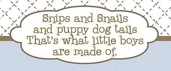 snips and snails and puppy dog tails canvas reion zoom