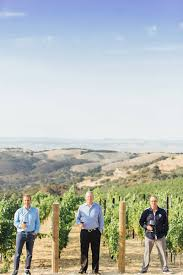 An American dream realized in Paso Robles: DAOU Vineyards & Winery – The  San Francisco Examiner