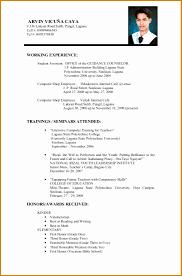 Example Curriculum Vitae 24 Curriculum Vitae Example For Job New Tech Timeline 11