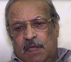 عبد العظيم الشناوي - ويكيبيديا