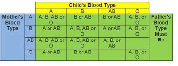 Baby Blood Type Chart Using Blood Types To Confirm A Childs Father