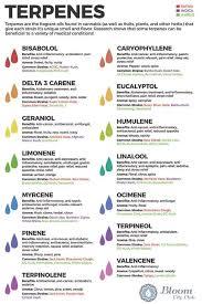 Terpene Medical Effects Medicinal Cannabis Opengrow
