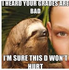 Funny memes on Pinterest | Sloths, Sloth Memes and Funny Sloth via Relatably.com