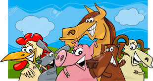 Image result for cartoon livestock