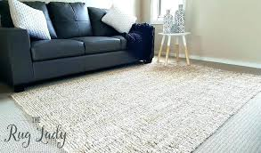 inspirational west elm jute rug and west elm jute rug chenille herringbone natural review in a