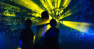 special offer descanso gardens enchanted forest of light preview party