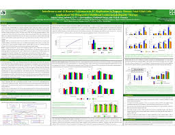 Scientific Poster Templates For Powerpoint The Highest