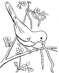 Small Picture Bird Eating Caterpillar Coloring Pages Birds Coloring Pages