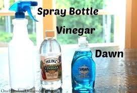 vinegar and baking soda for cleaning glass clean shower doors with