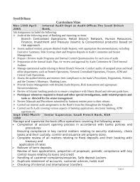 Professional Internal Auditor Resume Page3