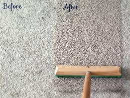 carpet rake. how to remove more dog hair and make your carpet look new again | tealandlime. rake
