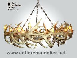 real antler chandelier deer antler chandelier australia