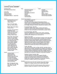Creative Director Resume Nardellidesign Com Museum Examples Example