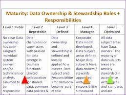 Data Governance Raci Chart Raci Template Excel Mblch New Implementing Effective Data