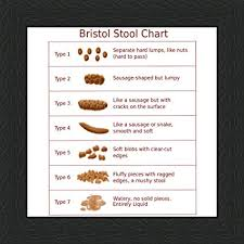 Behind The Glass Bristol Stool Chart 6 X 6 Black Frame
