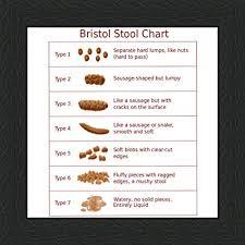 Bristol Stool Chart Type 6 Behind The Glass Bristol Stool Chart 6 X 6 Black Frame
