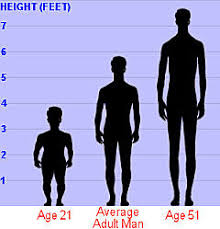 The Height Of Most Pakistani Women 55 Is Between 5 To 6