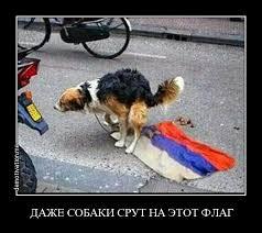 Чубаров о визовом режиме с РФ: Мы потеряем какие-либо способы общения с украинцами, которые живут в оккупированном Крыму - Цензор.НЕТ 419