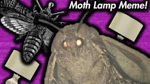 Moth Lamp Meme Dank Memes Of September