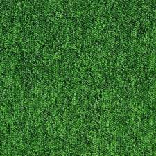 interior lime green carpet lime green carpet runner lime green carpet texture for lime green