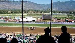 Breeders Cup Charts 2010 Nearly 160 Million Wagered On 2016 Breeders Cup Record