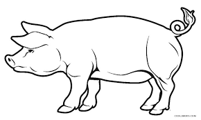 Small Picture Free Printable Pig Coloring Pages For Kids Cool2bKids