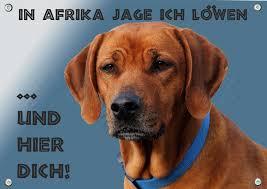 Hundeschild Rhodesian Ridgeback Wetterbeständiges Metall Warnschild