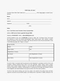 Bill Of Sale Form Ga Luxury Ziemlich Bill Sale Formular Im Pdf Ideen ...